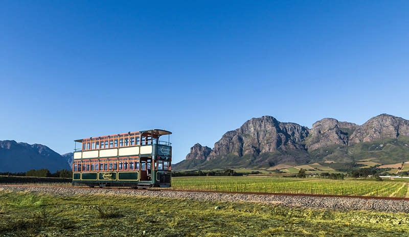 Cape Town, South Africa, Greater Kruger National Park, Ilios Tours, Avril O'Connor, District Six, District 6 Museum,Victor Verster Prison, Cape of Good Hope,Franschhoek Wine Tram, Luxury Signature Safari Special, Visit South Africa