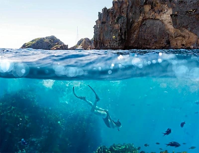 Diving, The Poor Knights Islands, New Zealand