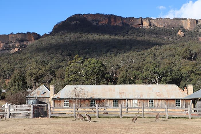One&Only Wolgan Valley: a winter and wildlife weekend